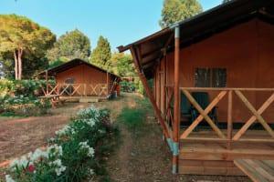 Safari Lodges te huur
